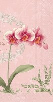 """9"""" x 5"""" Pink Orchid on Pink Guest Towels"""