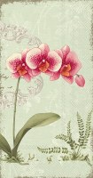 """9"""" x 5"""" Pink Orchid on Green Guest Towels"""