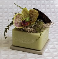 """4"""" Square Lotus and Orchid Wax Box"""