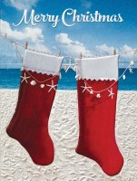 Box of 10 Seaside Stocking Cards