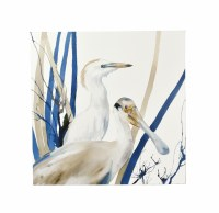 "24"" Square Blue and White Heron and Spoonbill Canvas"