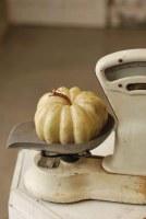 """6.75"""" Cream Pumpkin"""