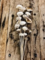 Bundle of 20 Bleached Natural Wooden Flowers