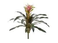 """22"""" Faux Mueve and Green Star Bromeliad"""