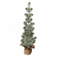"""25"""" Frosted Slim Pine Tree With Burlap"""