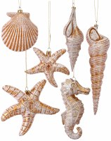 Box of 6 White Washed Gold Sealife Ornaments