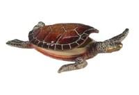 """6"""" Green Turtle Box"""