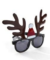 "7"" Antler Sunglasses"