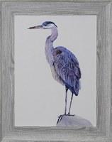 "30"" x 24"" Blue Heron Head Up Gel Print Framed"