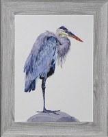 "30"" x 24"" Blue Heron Curled In Gel Print Framed"