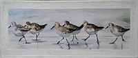 "24"" x 62"" 6 Sandpipers Gel Framed Print"