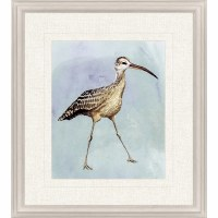 "31"" x 27"" Watercolor Beach Bird 2 Print Framed"