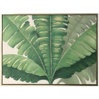 "36"" x 48"" Banana Tree Top Canvas"