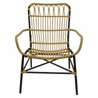 Black Frame Faux Rattan Chair