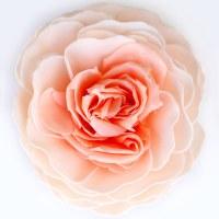 """5"""" x 3"""" Serendipity Garden Rose Soap Flower"""