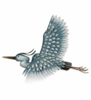 "26"" Blue Heron In Flight Metal Wall Plaque"