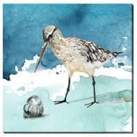 "16"" Square Long Bill Shorebird Canvas"
