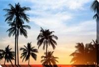 "38"" x 60"" Tropical Sunset Canvas"