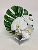 """13"""" White Orchid With Monstera Leaf in Silver Glass VAse"""