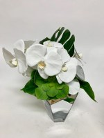 """16"""" White Orchid and Succulent In Silver Glass Vase"""