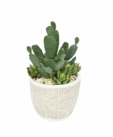 "10"" Prickly Pear Cactus In Taupe Pot"