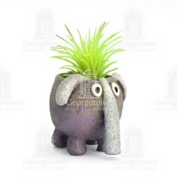 "2.5"" Dink The Elephant Planter"