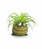 """2.25"""" Green Baby Frog Planter"""