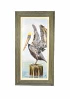 "43"" x 23"" Brown Pelican Wing Out Gel Framed"