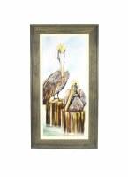 """43"""" x 23"""" Two Brown Pelican Gel Framed"""