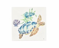 """24"""" Square Sea Turtle With Shells Canvas"""