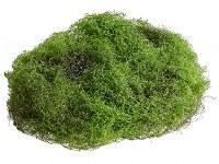 """9"""" Green Moss Sheet"""