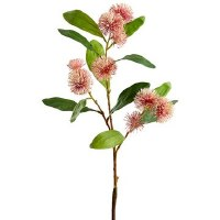 "29"" Pink Sweet Gum Blossom"
