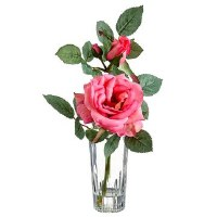 "9"" Pink Rose In Glass Vase"