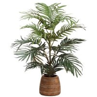 "26"" Green Parlor Palm Potted"