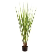 "52"" Green Marsh Grass Potted"