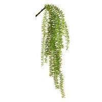 """24"""" Green Hang Fern"""