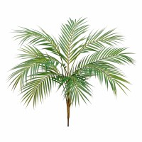 "38"" Green Areca Palm"