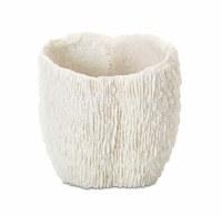 """6"""" White Faux Coral Pot"""