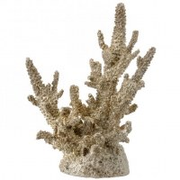 "10.5"" Champagne Gold Faux Polystone Coral"