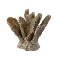 "7"" Champagne Gold Faux Polystone Coral"