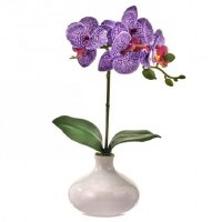 "13"" Purple and White Faux Phaleo In White Vase"
