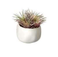 "3.5"" Pink Faux Tilandsia In White Pot"