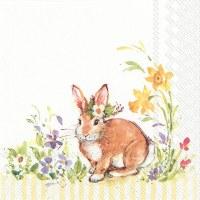"""5"""" Square Lovely Brown Bunny Bevarge Napkin"""