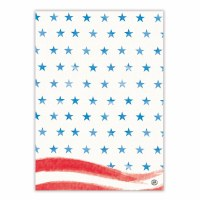 "20"" x 28"" Red White and Blue Kitchen Towel"