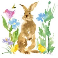"6.5"" Square Felix Brown Bunny Lunch Napkin"