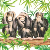 "5"" Square 3 Chimps Beverage Napkin"