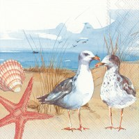 "5"" Square 2 Seagulls At Beach Beverage Napkin"