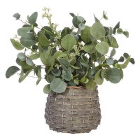 "14"" Eucalyptus In Basket"