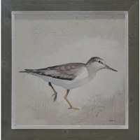 "30"" Square Gray Sandpipers 2 Framed Gel Print"