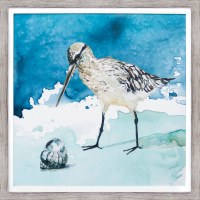 "27"" Square Shore Bird With Shell Facing Left Framed Gel Print"